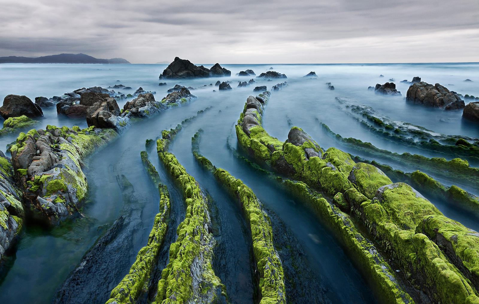 schizza di mare