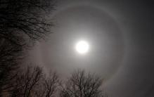 aureola luna
